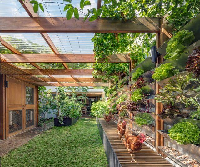 inside-outside-garden-2765793
